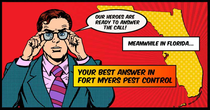Pest Control Fort Myers
