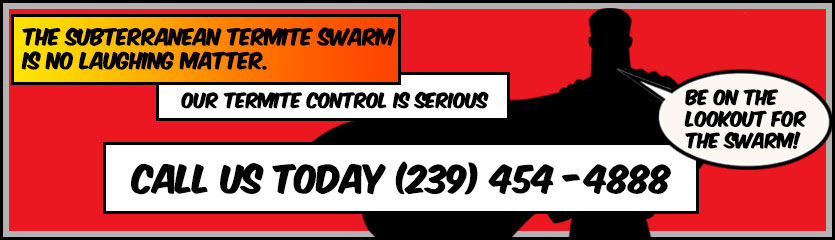 Link to call PestMax directly at 239-454-4888
