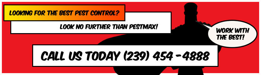 PestMax Pest Control Hero asking you to call 239-454-4888 for pest control service