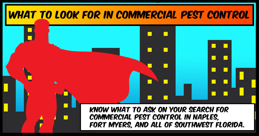 What to look for in commercial pest control