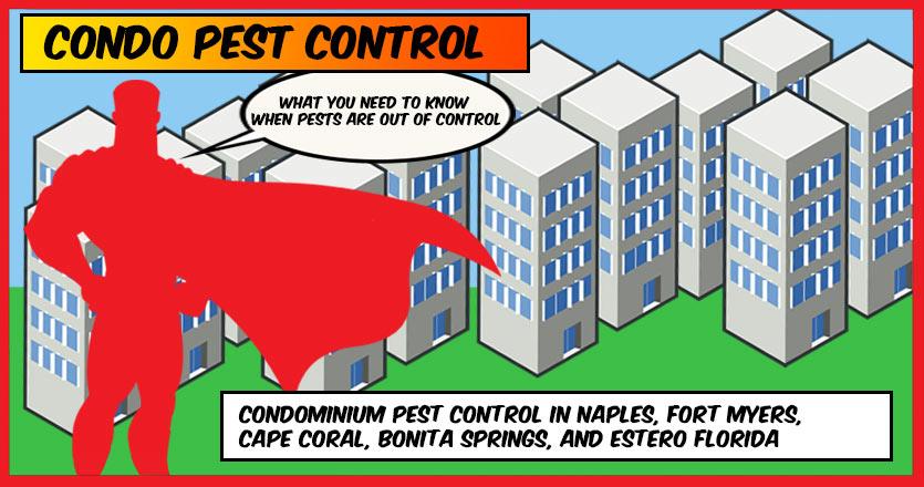 Condo Pest Control Pestmax 174 Pest Control Blog