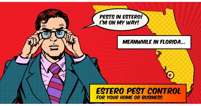 Pest Control Estero