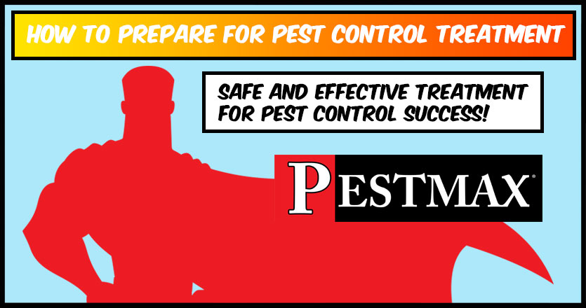 How to Prepare for Pest Control Treatment