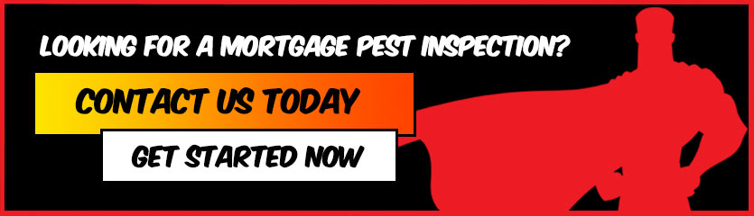 mortgage-pest-inspections-southwest-florida-pestmax-pest-control