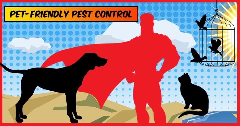 Pet-Friendly Pest Control in Naples, Florida