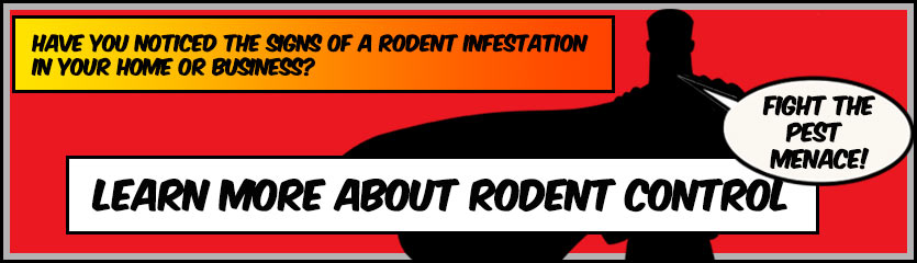 Click to visit our Rodent Control Page and learn more | PestMax® Pest Control Solutions