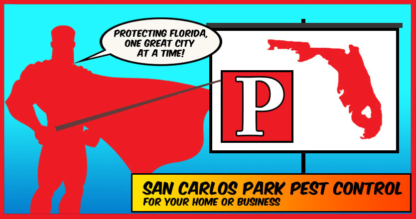 Pest Control San Carlos Park