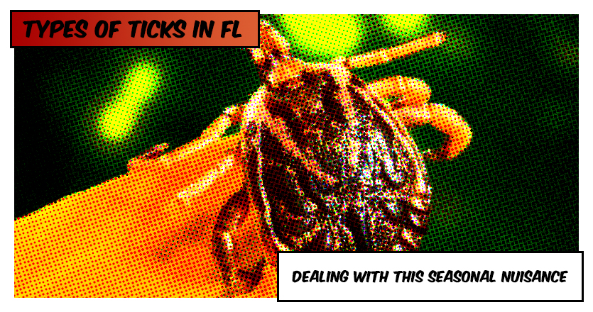 Types of Ticks in Bonita Springs Florida